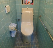 http://toshokensetsu.jp/works/toilet/20150925/101/