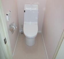 http://toshokensetsu.jp/works/toilet/20150925/160/
